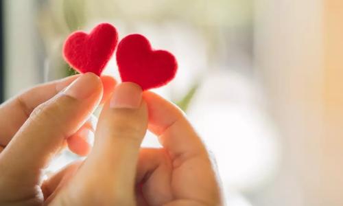 كيف أجد الحب