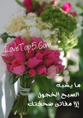 جمل وردة حب