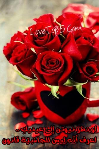 اجمل وردة حب