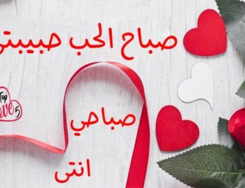 صباح الحب حبيبتي صباحي انتي يا روحي